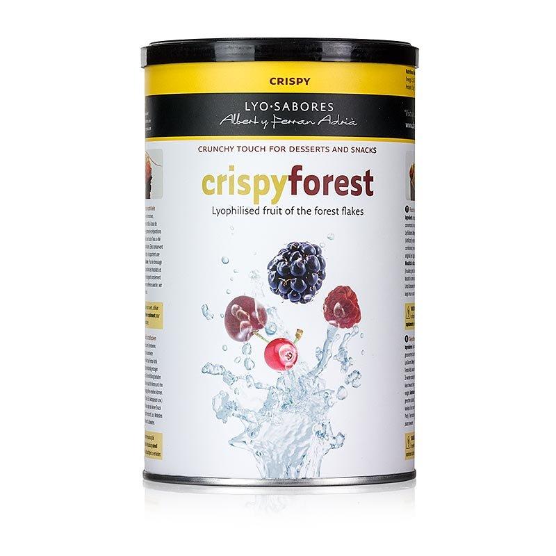 Lyo-Sabores, Crispy Forest, Flocken mit Waldfrüchtegeschmack, 300 g