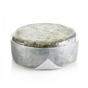 Kaeskuche - Chiriboga Blue, Käse aus Kuhmilch, 8 Wochen gereift, ca. 2,5 kg