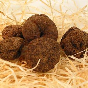 Asiatrüffel - tuber indicum, gewaschen, China, Okt./April, Preis/g (€ 0,22/g) 30 Gramm